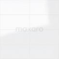 Wandtegel Blanco 30x60cm Uni Wit Glanzend Gerectificeerd Tegel Blanco 301-500101